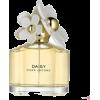 Daisy - Fragrances -