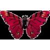 Leptir - Animali -