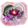Decoration flower - Illustrations -