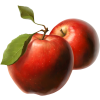 Apples - Fruit -