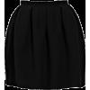 Carven Skirt - Skirts -