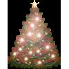 Christmas Tree Colorful - Plants -