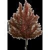 Fall Tree - Biljke -