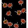 Falling Leaves - Plants -