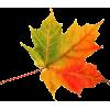 Falling Leaf - Plants -
