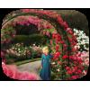 Garden - Narava -