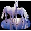 Horses - Živali -