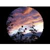 Sky Pink - Priroda -