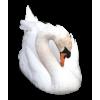 Swan - Životinje -
