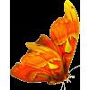 leptir - Animals -