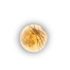 Moon - Nature -