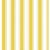 Yellow - My photos -