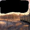 Train Psd - Nature -