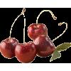 Cherry - Fruit -