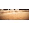 Desert - Natureza -