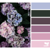 Design seed - Background -