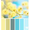 Design seed - Pozadine -
