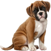 Dog - Животные -