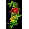 Doll Background - 植物 -