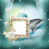 Dolphin - Background -