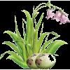 Easter - Articoli -