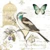 Elemento3A - Animals -