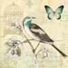 Elemento3 - Animals -