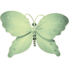 Butterfly - Illustrazioni -