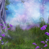 Enchanted Forest - Background -