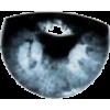 Eye - Figure -
