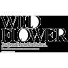 FLOWER FIELDS - Texts -