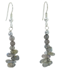 Faceted Labradorite Earrings - Earrings -