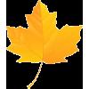 Fall Leaf - Items -