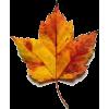 Fall Leaf - Objectos -