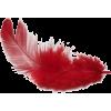 Feather - Chapéus -