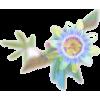 Fleur - Nature -