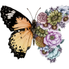 Floral Butterfly Design - イラスト -