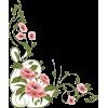Floral Corner - Frames -