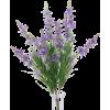 Floral Sprays - 植物 -