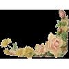 Floral - Frames -