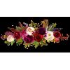 Floral border - Plantas -