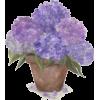 Flower Art - Illustrations -
