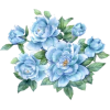 Flower Blue - Plants -