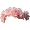 Flower Crown - Items -