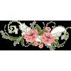 Flower Spray - Piante -