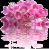 Flower - Ostalo -