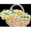 Flower - 插图 -