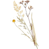 Flower - Przedmioty -