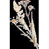 Flower - Objectos -