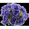Flower art - Ilustrationen -